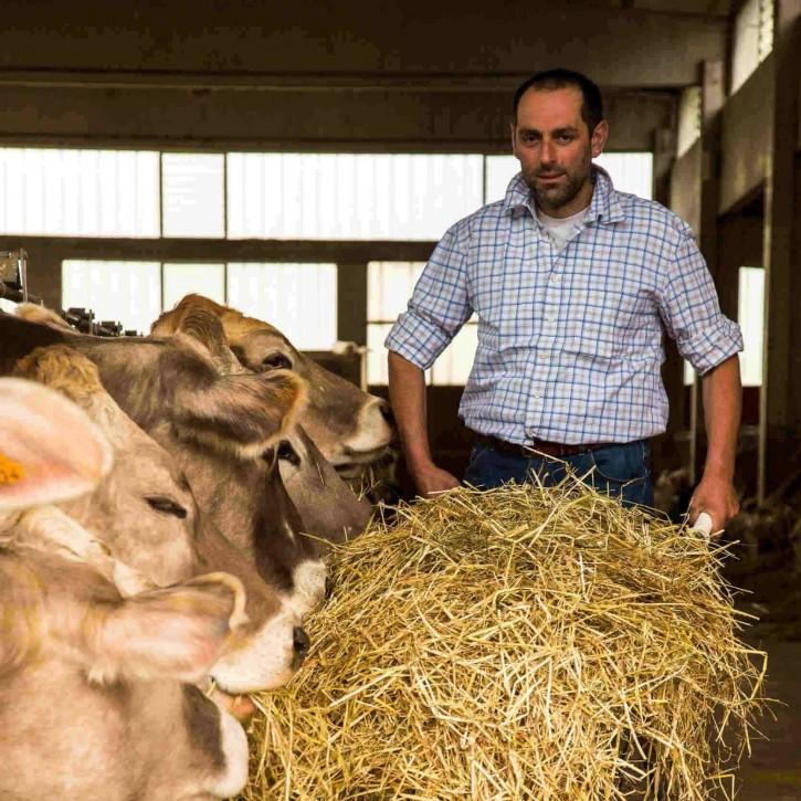 Allevamento degli animali presso un nostro socio della latteria Valtellina