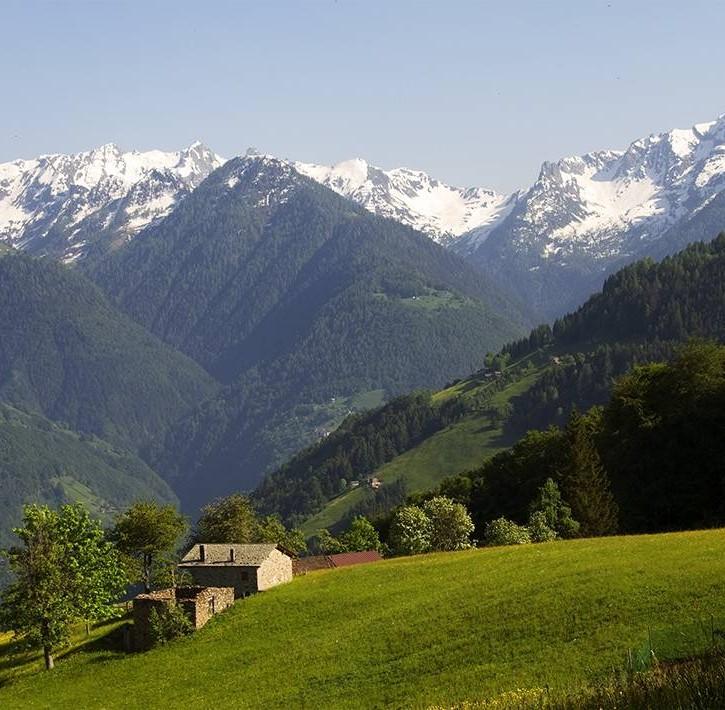 Bassa Valtellina - alpeggi sulle Alpi