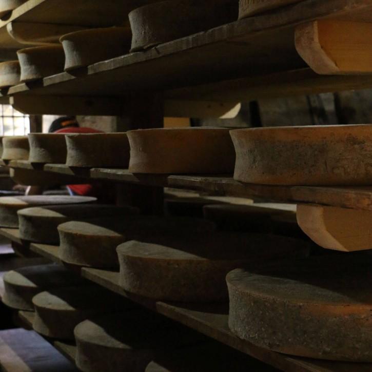 I formaggi della latteria Valtellina