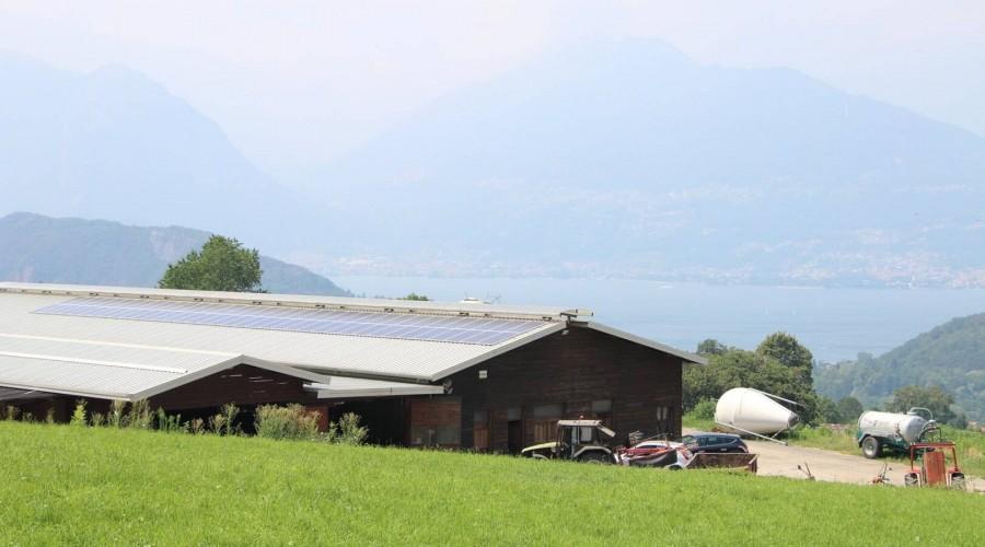 Aziende agricole: Immagine 3